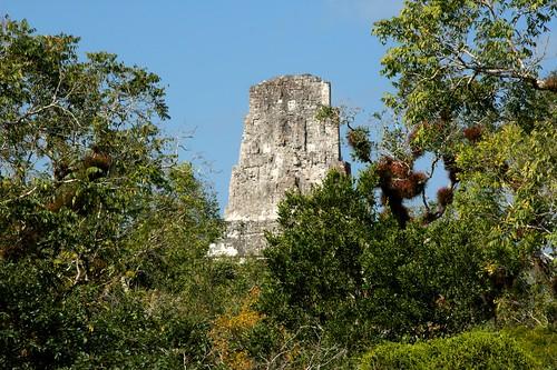 Temple Of The Jaguar Priest - Tikal Ancient Mayan Site