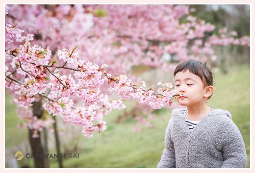 河津桜と女の子