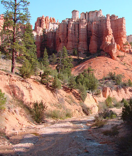 Tropic Ditch, Mossy Cave Trail, Bryce, UT 2009