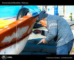 1081_D7D9586_bis_Mondello