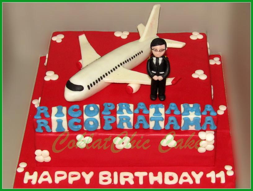 Cake Pilot RICO 22 cm