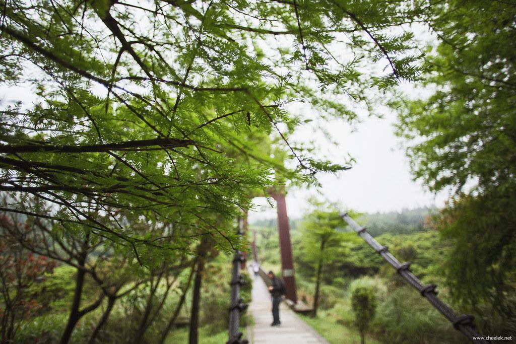 Taiwan_Flickr-055