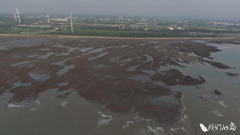 大潭藻礁開發案在2018年10月通過環評。身處保育與能源的拉鋸。
