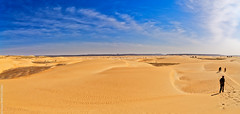 Dunes (Adrar, Mauritanie)