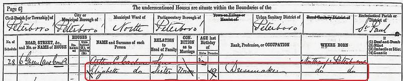 Eliz 1881 census