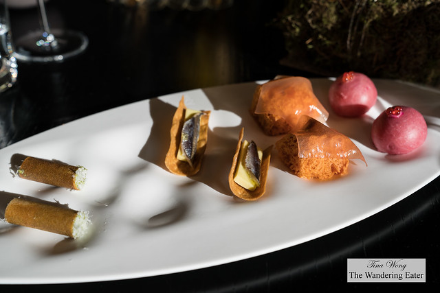 Amuse bouches - canneloni filled with fish, sardines and saor, tomato cake with tomato gelee, beet root bread