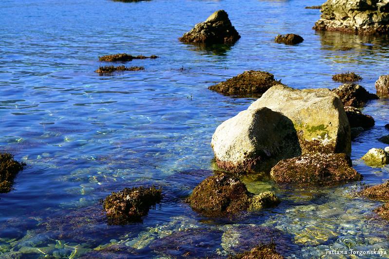 Камни в водах Адриатики неподалеку от берега. Савина