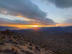 Between Yucca and Morongo