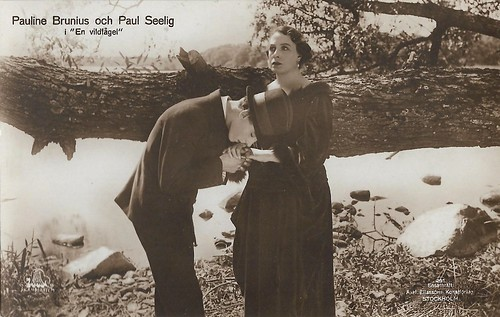 Pauline Brunius and Paul Seelig in En vildfagel (1921)