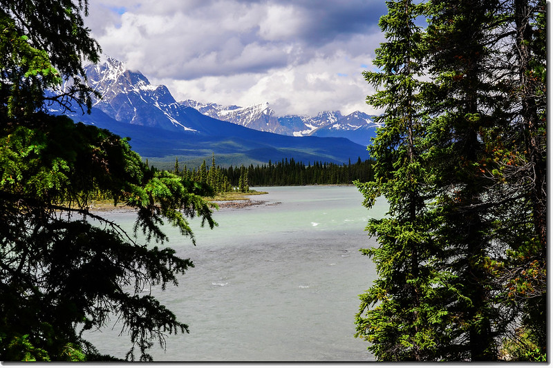 The Athabasca River and a Mountain View (Jasper National Park) 4