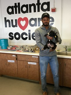 March 2019 Adoptions