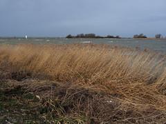 Makkum - Ijsselmeer