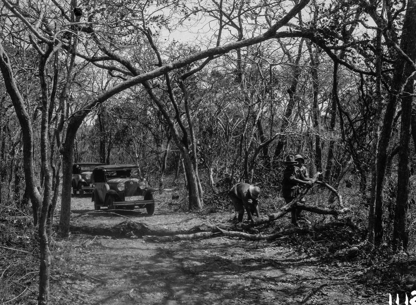 1112. Лундази. Две экспедиционные машины на дороге
