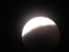 WolfMoonEclipse-6