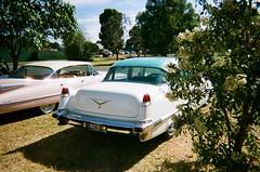 1956 Cadillac (photo 3)