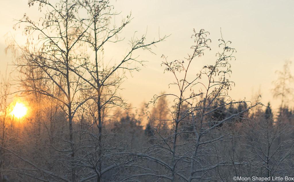Sunset_December_2018_Finland