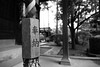 Photo:20190307 Tokyo 9 By BONGURI