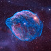 Sharpless 308 (the Dolphin Nebula) by Martin_Heigan