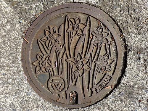 Nishikatsura Yamanashi, manhole cover 2 (山梨県西桂町のマンホール2)