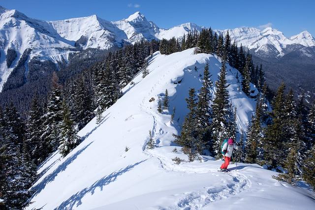 Snowshoeing - Gypsum Ridge - Feb 2019-16