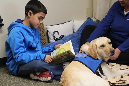 Clarke Northampton: Sunny the Dog Visits as Reading Buddy