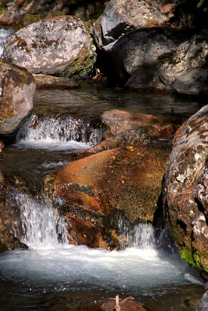Galatea and Lillian Lakes Trail 1: Mountain Creek | Water fl