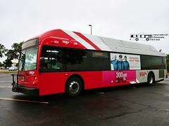 404 7 (05) Stone Oak Express