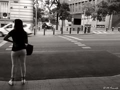 013561 - Madrid