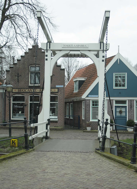 Dutch flowers: Edam, The Netherlands | Your Dutch Guide