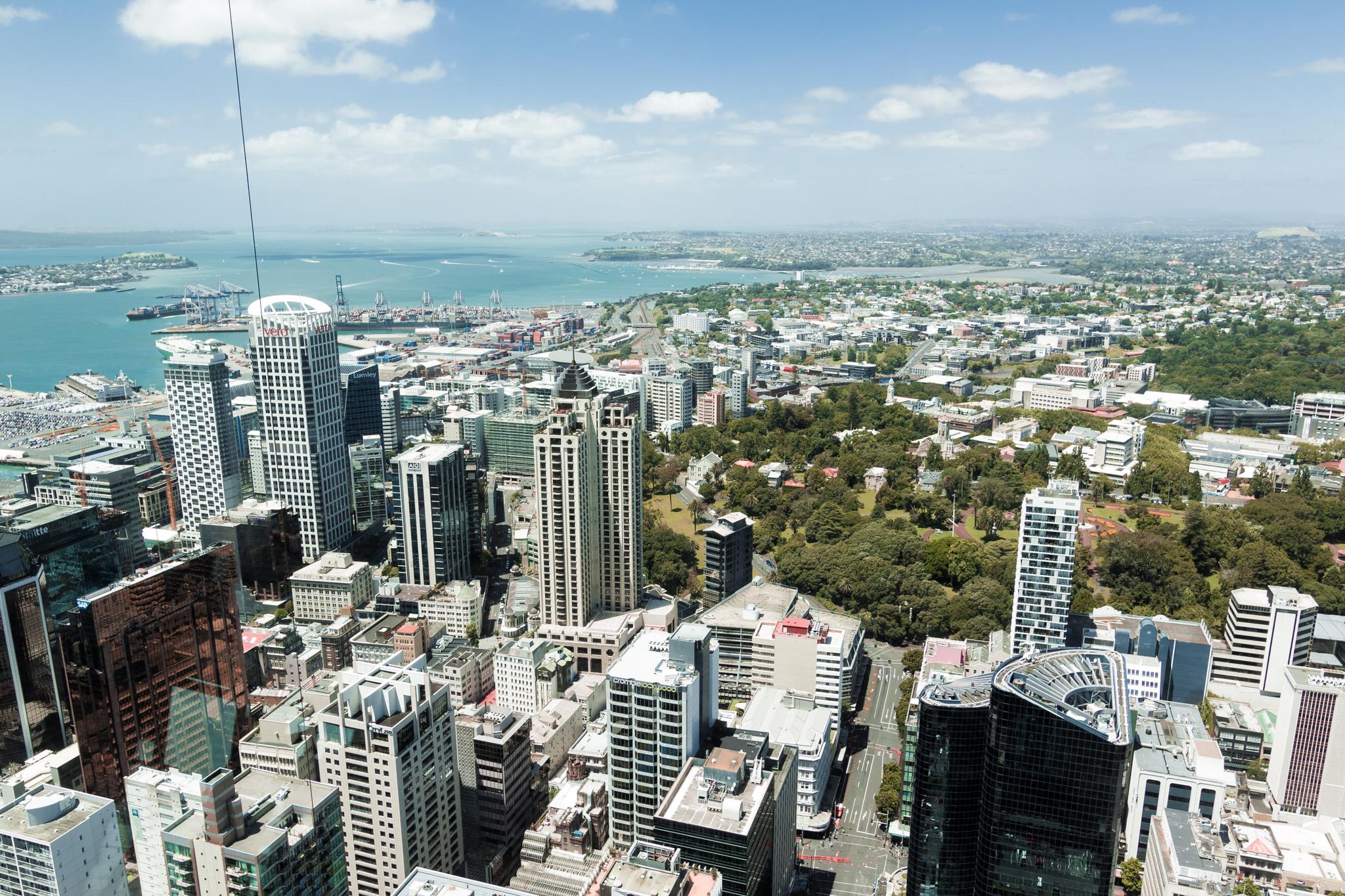 Auckland 3-8