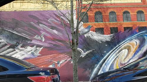 Cosmic pigeons