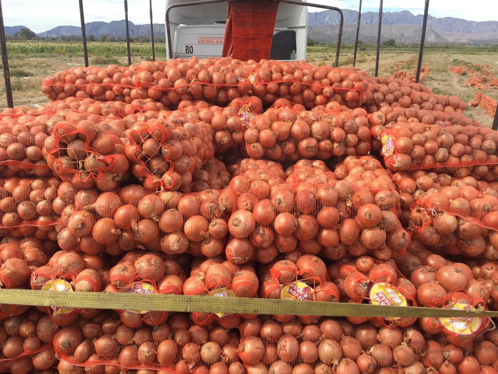 cebollas pimiento berenjena (5)
