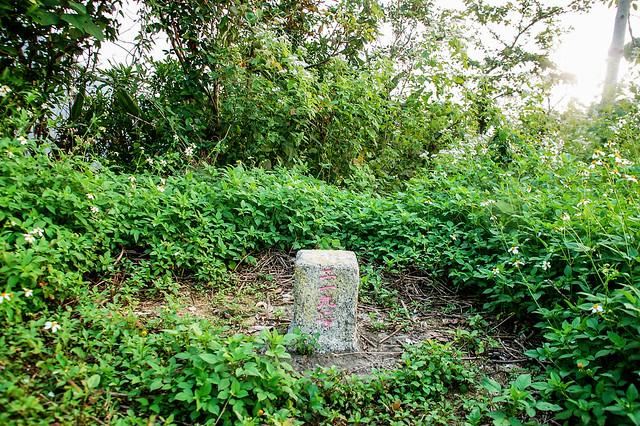 岩子頂山三等三角點(# 219 Elev. 439 m)