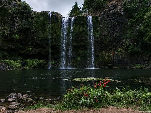 Whangerai Falls (Otuihau), Tikipunga
