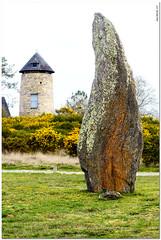 Le moulin de Cojoux - Photo of Langon