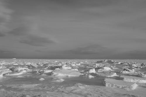 17-02-2019 iced sea (55)