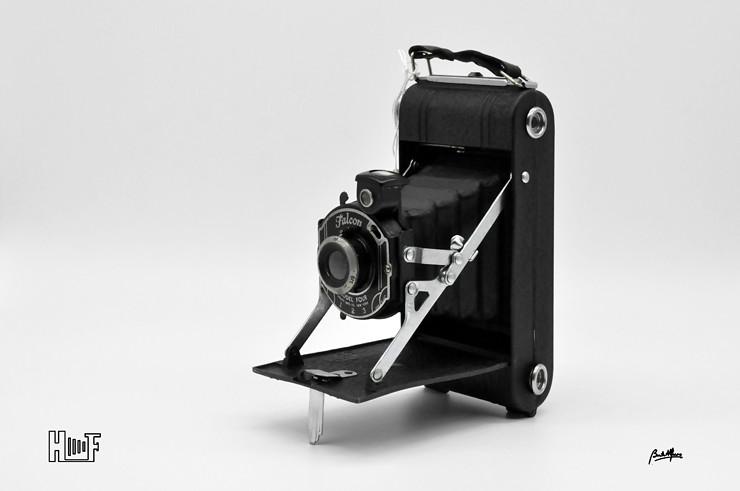 _DSC8805 Falcon Model Four