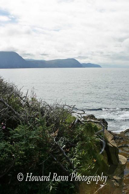 Gros Morne National Park (622)