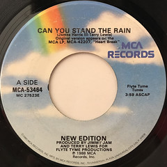 NEW EDITION:CAN YOU STAND THE RAIN(LABEL SIDE-A)