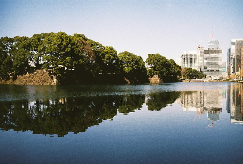 Leica M2+Leitz Summicron 35mm f2 0+Kodac Ultramax 400皇居外苑