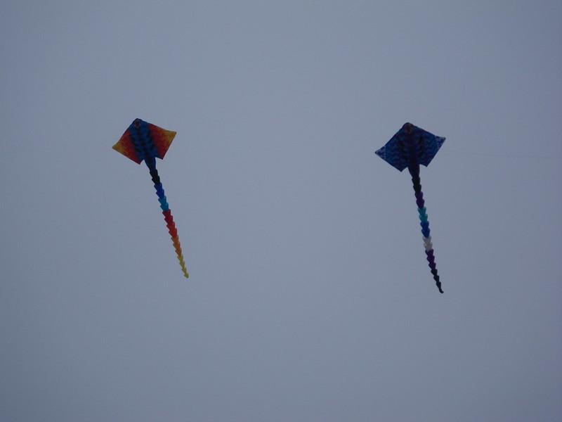 Kite flying on Walmer Beach
