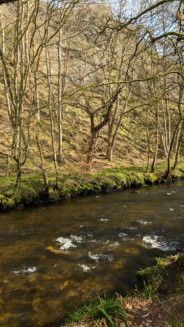 Teign below Broadmoor Common (east)