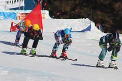 Domácí špička i světová elita. Dolní Morava hostí Evropský pohár ve skicrossu