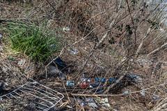 06-Prendre la haie pour une poubelle