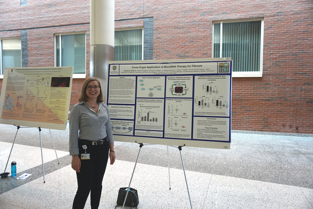 2018 Summer Scholars Poster Session