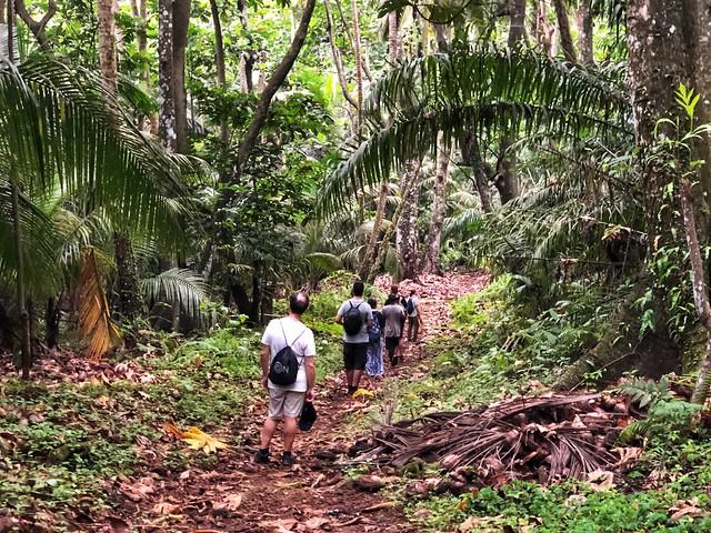 El grupo caminando por la foresta en la isla de Rolas (Santo Tomé y Príncipe)