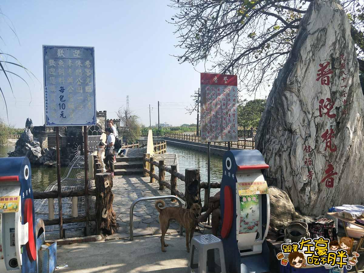 台南佳福寺溜滑梯(台南親子旅遊)-47