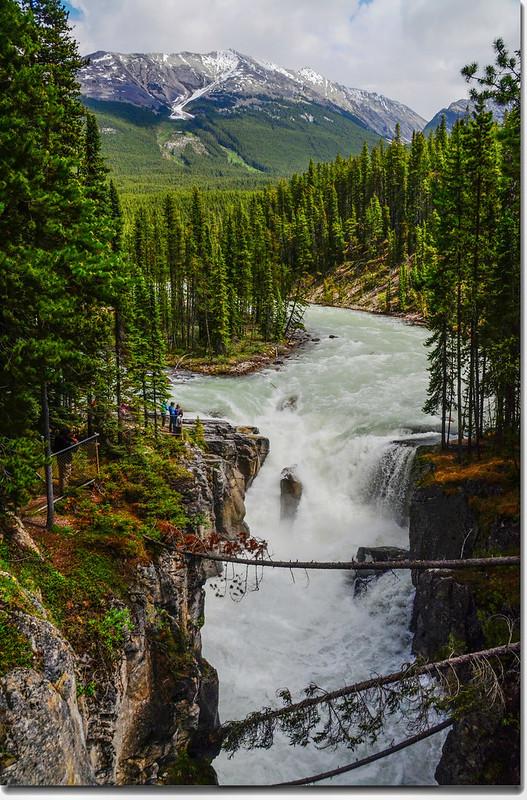 Sunwapta Falls  (2)