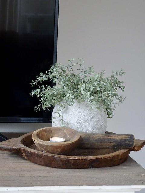 Plantje in kruik olijfbak