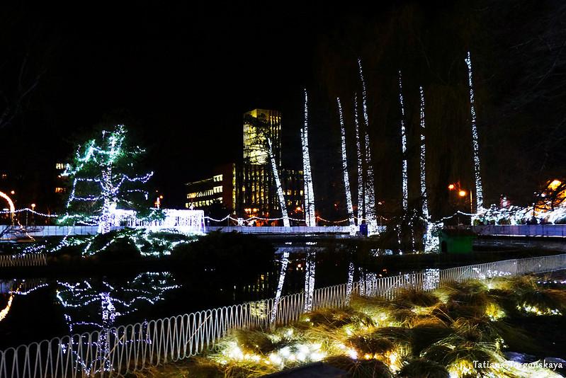 Праздничный Дунайский парк